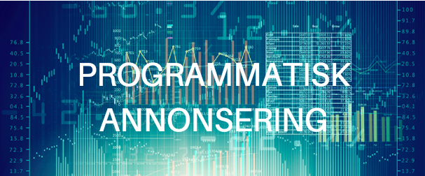Programmatisk Annonsering – En Ultimate Guide